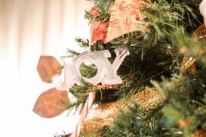Christmas 2009 - Joy